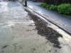 19. Mai 2012 - Beseitigung Unwetter-Folgen, Bereich Niederkirchen; Wörsbach Bachstraße