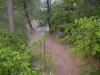 19. Mai 2012 - Beseitigung Unwetter-Folgen, Bereich Niederkirchen; angeschwollener Odenbach im Bereich Schorndelle