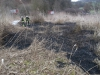 21. März 2015 - Flächenbrand, Hirschhorn