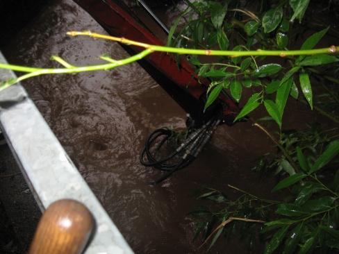 Treibgut verstopfte den Kanaleinlauf. Der Bauhof beseitigt die Verstopfung.