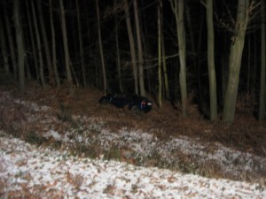 Verkehrsunfall, L382 Otterberg - Baalborn