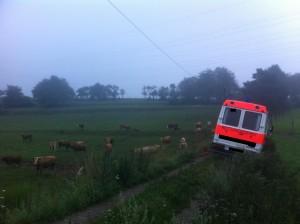 Einsatzstelle im Morgengrauen; Bild: Feuerwehr Otterberg / Hendrik Braun