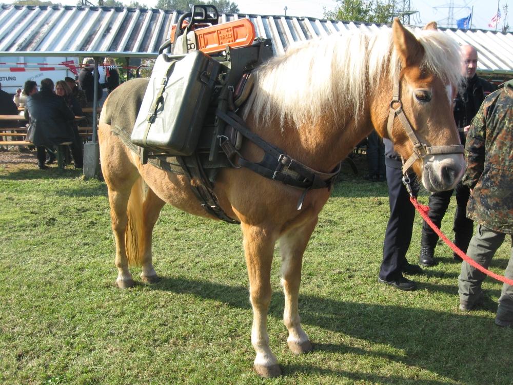 22. Oktober 2011 – Tag der Hilfs- und Rettungsdienste