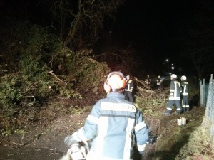 28. Januar 2015 - Baum über Fahrbahn, Otterberg Schloßberg