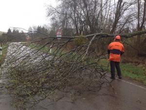 31. März 2015 - Beseitigung Unwetter-Folgen, Verbandsgemeinde-Bereich