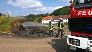 6. Juni 2015 - Flächenbrand, Otterbach Ziegelhütterstraße