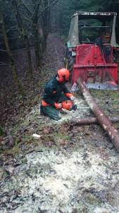 Praktischer Teil im Wald.