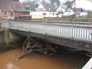 Baum klemmt unter Brücke in Katzweiler