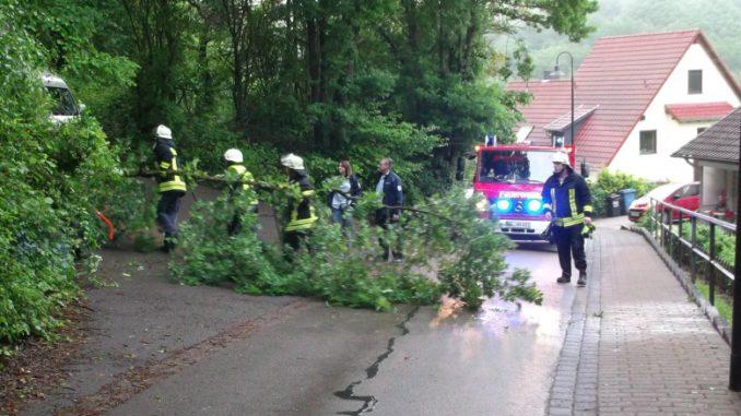 3. Juni 2016 - Baum über Fahrbahn, Sulzbachtal Hebelstraße