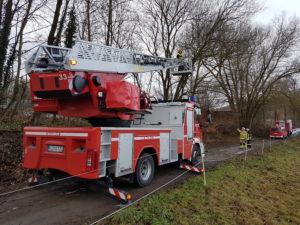 Bei Katzweiler drohte ein rund 15 Meter hoher Baum auf einen Feldweg zu stürzen.