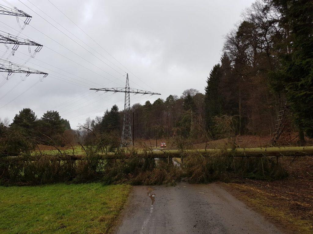 Einsatzstelle im Wald zwischen Otterberg und Baalborn.